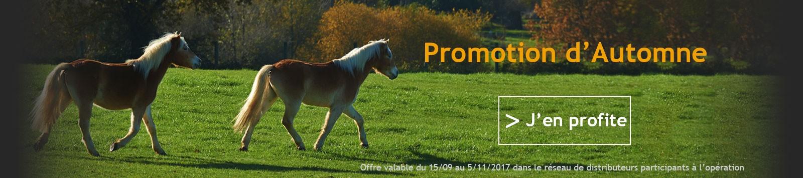 Promotion Automne