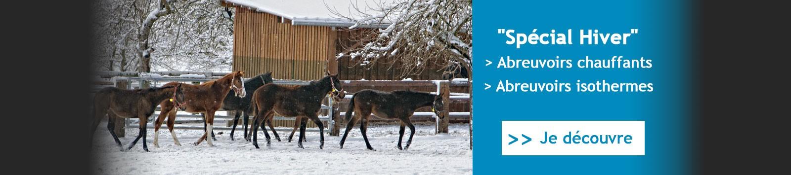 Abreuvoirs chauffants et isothermes pour chevaux